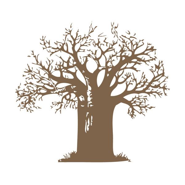 Baobab Health Trust