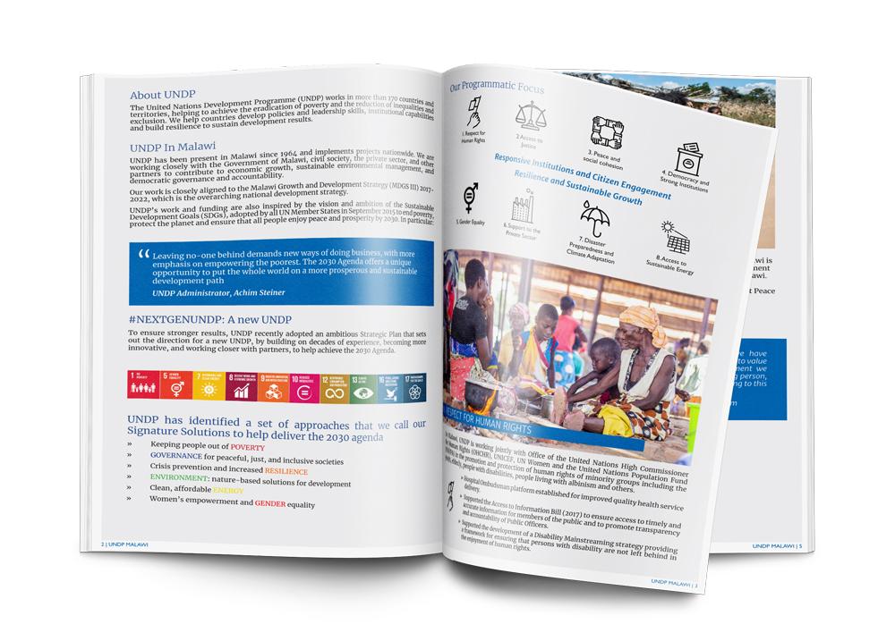 UNDP Factsheet