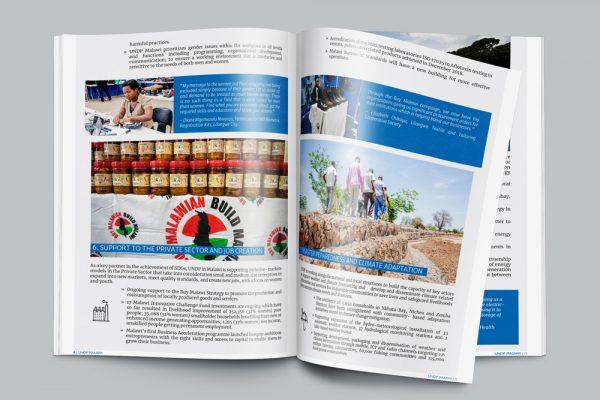 UNDP in Malawi Report